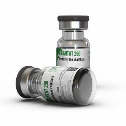 Enantat 250 mg (1 vial)